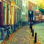 """Leiden Street"" by jacquerose"