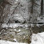"""mountain stream taos ski valley"" by giamarie"