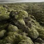 """""""Moss Covered Lava Flow - Iceland"""" by Degginger"""