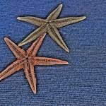 """""""Estrellas de mar"""" by Duende"""