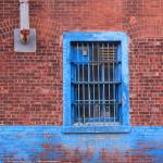 """blue on brick"" by Delany"