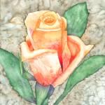 """Peach Rose"" by foxvox"