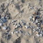 """Pebbles at the beach"" by herzner"