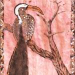 """Yellow-billed Hornbill"" by KatieArt"