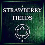 """Strawberry Fields Sign"" by CandiceComptonRobertson"