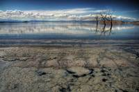 Salton Sea Reflections