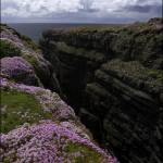"""Clare cliff face"" by IrishPhoto"