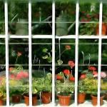 """""""Artist Garden 2"""" by kenart"""