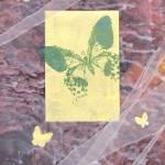 """""""Green Butterfly"""" by JenniferUher"""