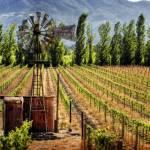 """Napa Valley Windmill"" by Katchlight"