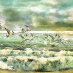 """Seagulls by the sea"" by ArteSigno"