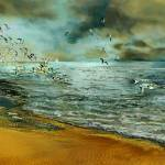 """Flying seagulls"" by ArteSigno"