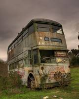 The Bus in the Bush