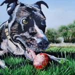 """""""Stella and her ball"""" by kevinrollins"""