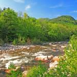 """Swift River, Kancamangus Pass"" by timseaver"