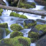 """waterfall_oregon_PICT0163"" by christopherboswell"