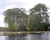 Okeefenokee National Park