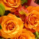 """Bouquet of Orange Roses Tall"" by AmyVangsgard"