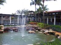 Tropical Fountain Garden