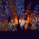 """December Sunset"" by ashjoielee"