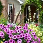 """Country Garden"" by dkocherhans"