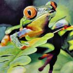 """Frog"" by kevinrollins"