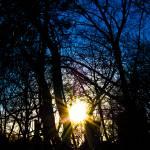 """""""Hier Kommt Die Sonne"""" by thinhle"""