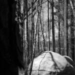 """Hidden"" by Bobicus"