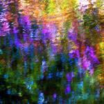"""""""Giverny spirit XXI"""" by Woodsman"""