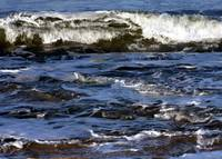 Waves on Coquina Beach I