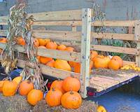 A Truckload of Pumpkins