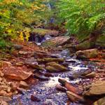 """Waterfalls at Ricketts Glen"" by LuciaH"