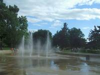 The Swim Fountain II