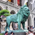 """""""The Lion Roars"""" by fotoguy49057"""