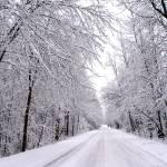 """""""Winter Road"""" by fotoguy49057"""