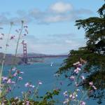 """Golden Gate Tower with Flowers"" by DaniCaliGirl"