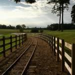 """Tracks"" by sherryk"