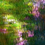 """Giverny spirit XXVIII"" by Woodsman"