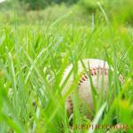 """Baseball"" by LELPhotography"