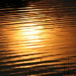 """Sun Ripples"" by GlennCartmill"
