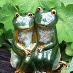 """Happy Garden Frogs"" by kalabart"