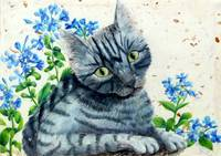 Kitty in Blue Flowers