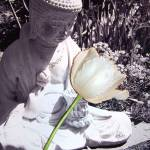 """Buddha Garden Statue With Tulip"" by kalabart"
