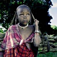 Masai Girl bringin home the firewood Art Prints & Posters by Jay Shapiro