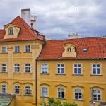 """Bird Over Prague"" by madeline"