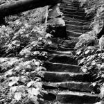 """""""Stairs"""" by caitieb9"""