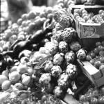 """Borough Market - artichokes, aubergines, lemons, t"" by NMB-2009"