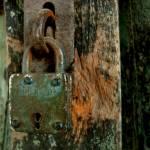 """Lock"" by Rahil"