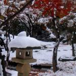 """Japanese Winter"" by Amy_Abe"