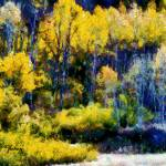 """""""Paonia Colors"""" by NancyH"""